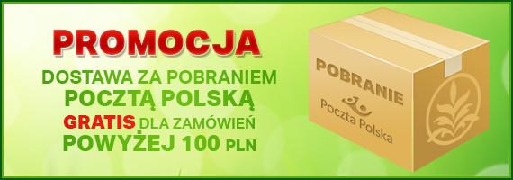 Pocztą Polską za pobraniem dla zamówień powyżej 100pln